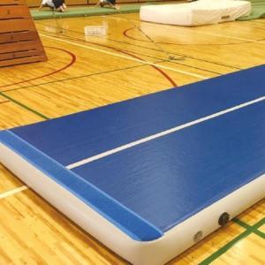 運動マット エアーマット 体操マット S-9571 エアマット 標準仕様 t10cm 90cm×120cm 送料【お見積】 (SWT)(QBJ37)
