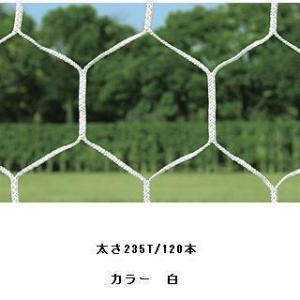 サッカーゴールネットHEXA (JS39151/B-6500)(分類:サッカー フットサル 試合用品ゴール)(QBJ07)