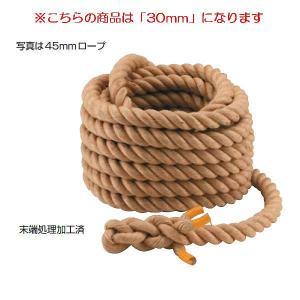 綱引ロープ30mm (JS83160/EKA412)(分類:運動会)(QBJ37)