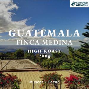 グアテマラ コーヒー豆 アンティグア アゾテア農園 200g 自家焙煎 スペシャルティコーヒー|袋|fifteencoffee