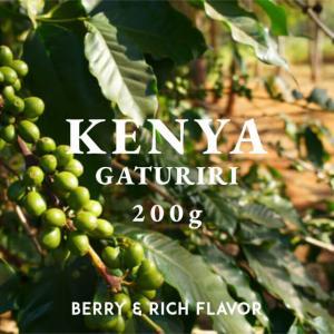 ケニア コーヒー豆 キリニャガ AA 200g 自家焙煎 スペシャルティコーヒー 袋|fifteencoffee
