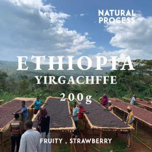 エチオピア コーヒー豆 イルガチェフェ イディド ナチュラル 200g 自家焙煎 スペシャルティコーヒー 袋|fifteencoffee