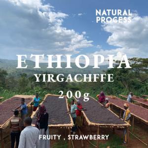 エチオピア コーヒー豆 イルガチェフェ イディド ナチュラル 100g 自家焙煎 スペシャルティコーヒー 袋|fifteencoffee