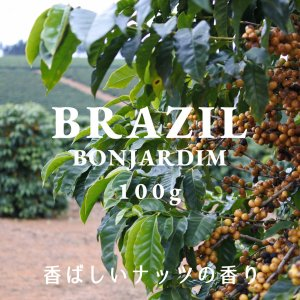 ブラジル コーヒー豆 ボンジャルジン農園 100g 自家焙煎 スペシャルティコーヒー 袋|fifteencoffee