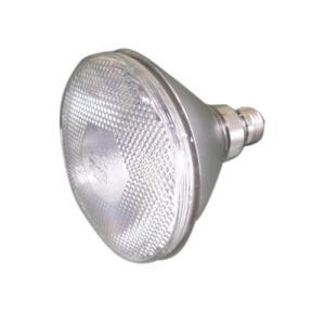 東芝 屋外用 ビームランプ 集光形 100W形 BRS110V80W|fiinet