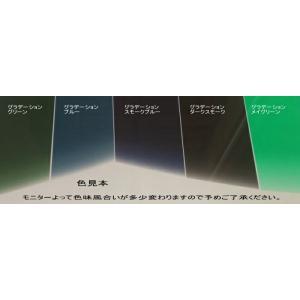 いすゞ 5代目(2007年- )(標準)フォワード カット済みトップシェード(ハチマキ)グラデーションタイプ film 02