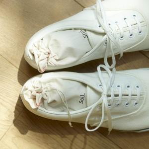 1日履いていたブーツや靴などの湿気とニオイを取り除いてくれる、soil (ソイル) ドライングサック...