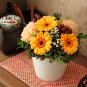 プリザーブドフラワー 姫花(ひめか) 季節の花 ギフト プレゼント あすつく 誕生日 お祝い 結婚祝い 新築祝い  開店祝い 開業祝い 送料無料 fine-flower