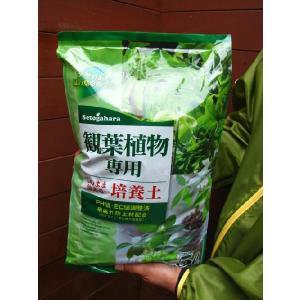 送料無料!!観葉植物専用培養土5リットル|finegarden