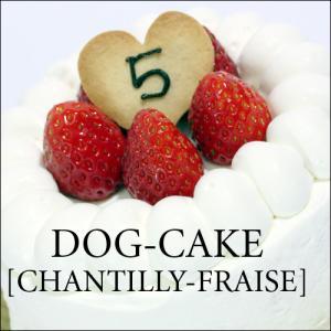 レストランの犬用ケーキ「シャンティー・フレーズ」|finocchio