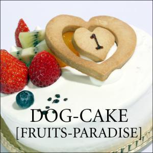 レストランの犬用ケーキ「フルーツ・パラダイス」|finocchio