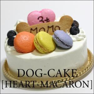 スペルト小麦を使った、レストランの犬用ケーキ「ハート・マカロン」|finocchio