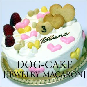 飼い主さんも一緒に!スペルト小麦を使ったレストランの犬用ケーキ「ジュエリー・マカロン」|finocchio