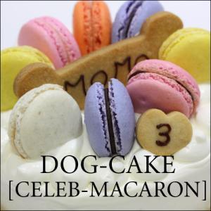 スペルト小麦を使いました!レストランの犬用ケーキ「セレブ・マカロン」|finocchio