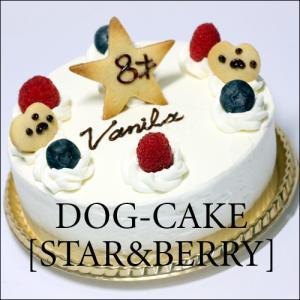 レストランの犬用ケーキ「スター・アンド・ベリー」|finocchio