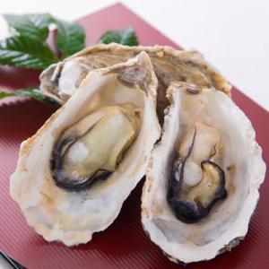 牡蠣のプチオーナー!100個の牡蠣をシーズン中いつでも楽しめる/殻牡蠣で生食加熱どっちも対応!|fishermanjapan|02
