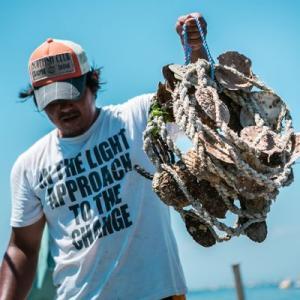 牡蠣のプチオーナー!100個の牡蠣をシーズン中いつでも楽しめる/殻牡蠣で生食加熱どっちも対応!|fishermanjapan|03