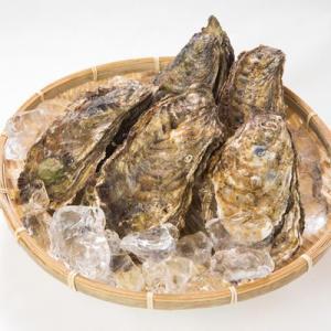 牡蠣のプチオーナー!100個の牡蠣をシーズン中いつでも楽しめる/殻牡蠣で生食加熱どっちも対応!|fishermanjapan|04
