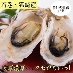 濃厚!狐崎産牡蠣/引き締まった身とクセのない味わいが特徴!/【加熱用殻付】|fishermanjapan
