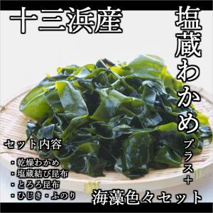 阿部勝太こだわりの十三浜産わかめセット|fishermanjapan