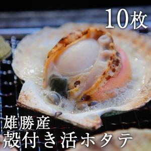 雄勝産/殻付き活ホタテ10枚セット/食べごたえ抜群の大きさ/期間限定|fishermanjapan