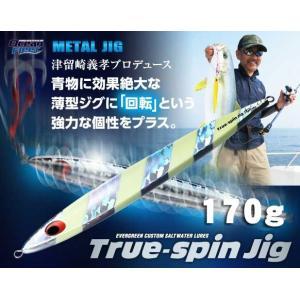 エバーグリーン トゥルースピンジグ 170g【メール便可】|fishing-inomata