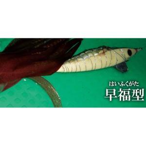 キーストン 早福型(はいふくがた) M号|fishing-inomata