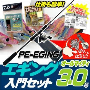 エギング入門セット ロッド・PEライン付きリール・エギ3.0号5本・エギケース・スナップ・リーダー6...