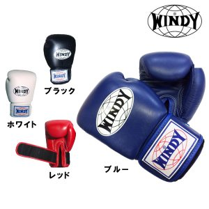 ウィンディ マジックテープ式トレーニンググローブ WINDY|fitnessclub-y