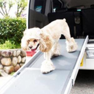 ペットステップ スライド 犬用スロープ|five-1