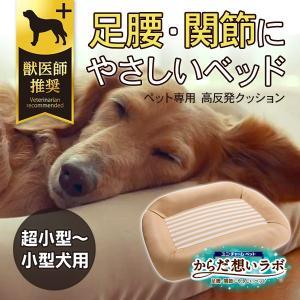 ユニチャームペット からだ想いラボ 足腰・関節にやさしいベッド 超小型〜小型犬用|five-1