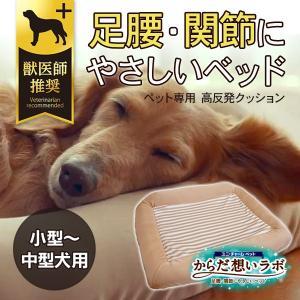 ユニチャームペット からだ想いラボ 足腰・関節にやさしいベッド 小型〜中型犬用|five-1