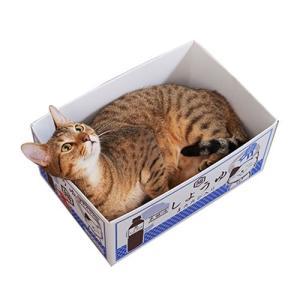 猫用爪とぎ エイムクリエイツ MJU(ミュー) 愛猫専用つめとぎ付き段ボール にゃんボール(しょうゆ箱)|five-1