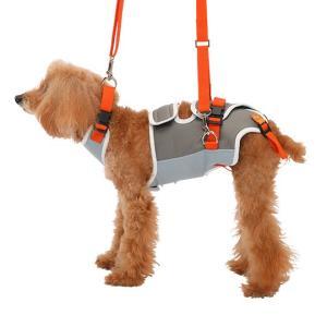 犬の体を支える機能を重視し、獣医師が監修して生まれたハーネスです。 犬種や体格に応じて選べるサイズ展...
