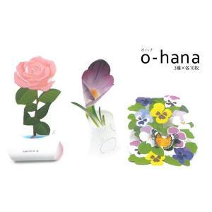 カミテリア クルル o-hana おはな メモ帳  メール便可|five-1