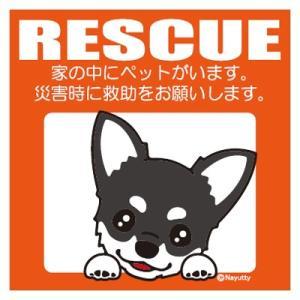 Leaps RESCUE(レスキュー) ペットステッカー チワワ BT  メール便可|five-1