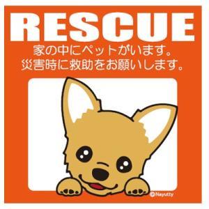 Leaps RESCUE(レスキュー) ペットステッカー チワワ RD  メール便可|five-1