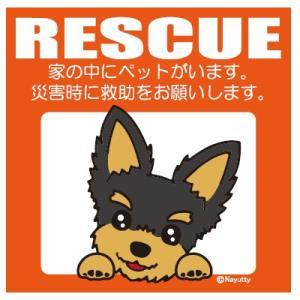 Leaps RESCUE(レスキュー) ペットステッカー ヨーキー  メール便可|five-1