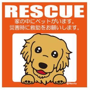 Leaps RESCUE(レスキュー) ペットステッカー ゴールデンR  メール便可|five-1