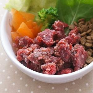 愛犬用生肉 北海道産 天然エゾ鹿肉 赤身ミンチプレート 500g(100g×5) 冷凍便 常温品同梱不可 ドッグフード|five-1