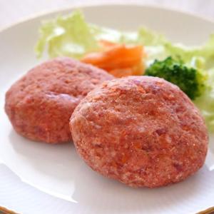 愛犬用生肉 天然エゾ鹿肉の手作りハンバーグ 100g(50g×2) 冷凍便 常温品同梱不可|five-1