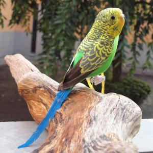 PUEBCO Artificial Birds Budgie プエブコ アーティフィシャルバード インコ グリーン|fiveandten