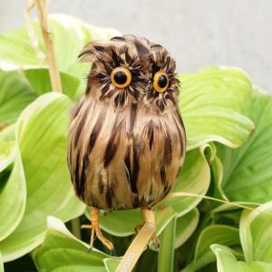 PUEBCO Artifical Birds Owl Brown プエブコ アーティフィシャルバード フクロウ茶 Sサイズ|fiveandten