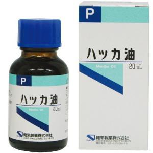 ハッカ油 20ml ケンエーの関連商品4