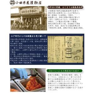 パスタに!ピラフに!トーストに!万能調味料「食べるオリーブオイル エコパック」2袋 [全国送料無料] [福島県 郡山市]|fkd-netplaza|06