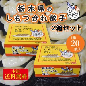 <栃木県のしもつかれ餃子2箱セット40個入>FN048 fkd-netplaza