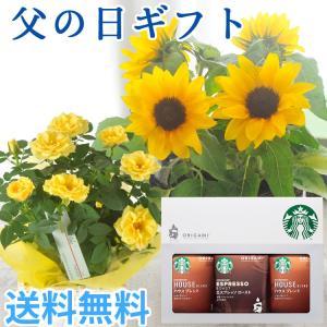 あすつく \遅れてごめんね/ 父の日 2021 花 プレゼント 花とコーヒー 選べる花鉢とスターバックスコーヒーのセット 鉢植え ギフト セット FKPP|fkjiyugaoka