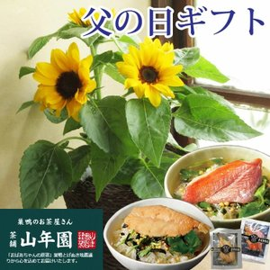 あすつく \遅れてごめんね/ 父の日 2021 花 プレゼント 花とグルメ ひまわり花鉢と高級お茶漬け2食のセット 鉢植え ギフト セット FKPP|fkjiyugaoka