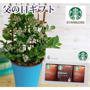 あすつく \遅れてごめんね/ 父の日 2021 プレゼント ブルーベリー鉢植え & スターバックスドリップコーヒー ギフトセット FKPP|fkjiyugaoka