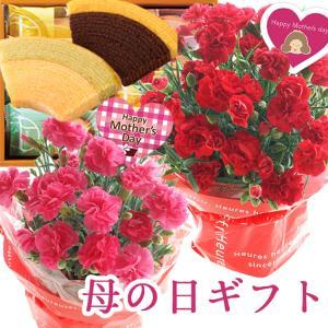 \早割/ 母の日 ギフト 2021 花とスイーツのセットB 選べる9種類 お花とプレミアムなスイーツのセット FKHH|fkjiyugaoka